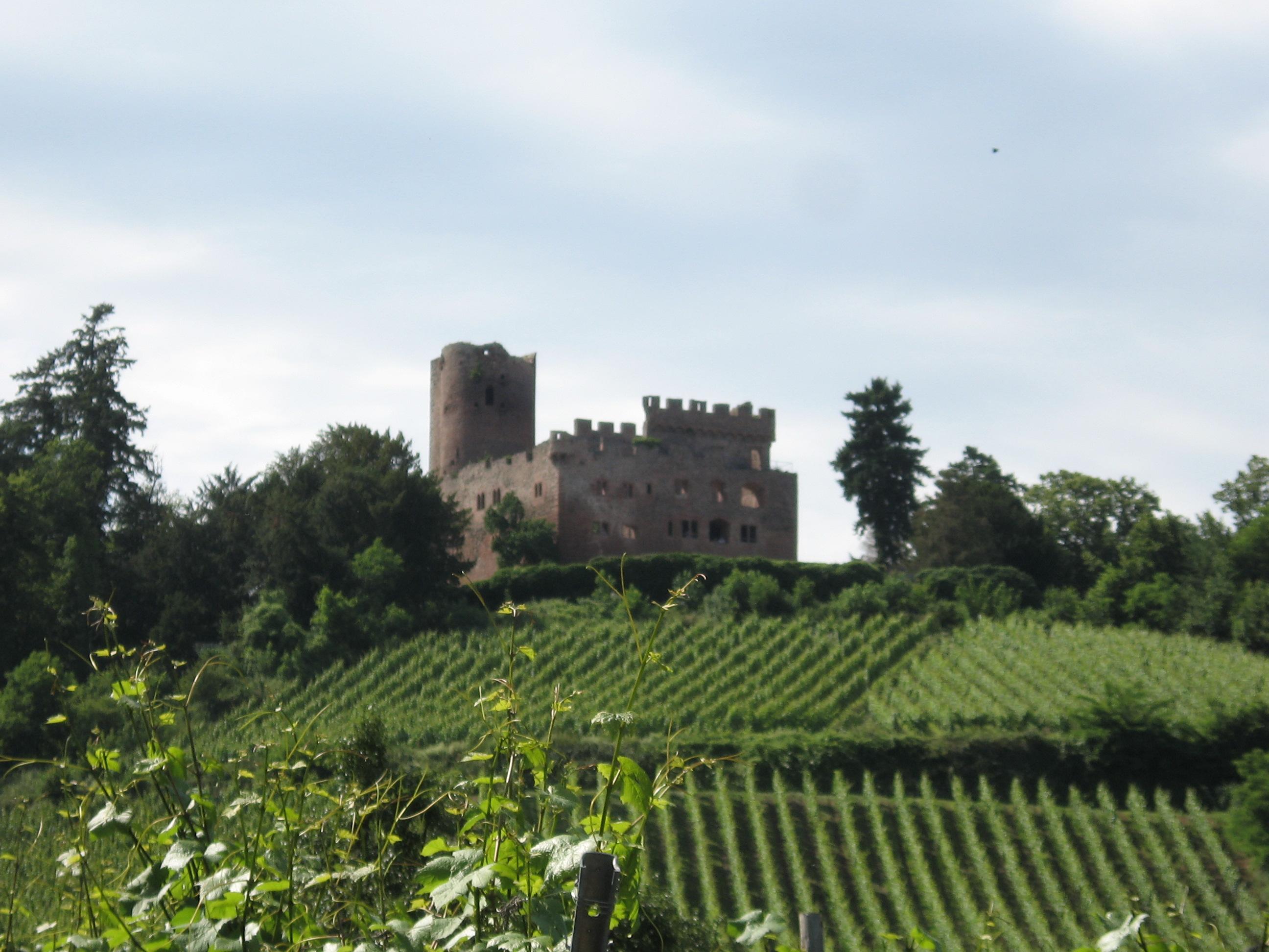 Volerie des Aigles (Kintzheim)